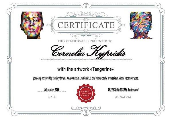 artbox-miami-certificate.jpg